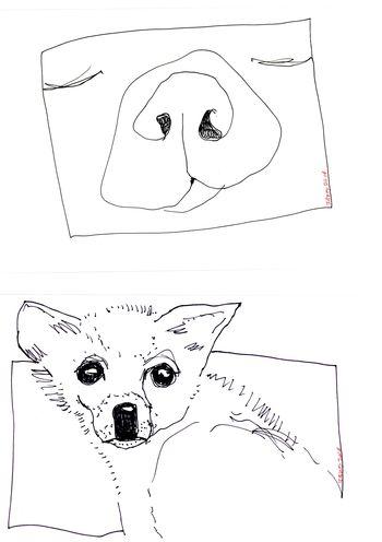 Draw009