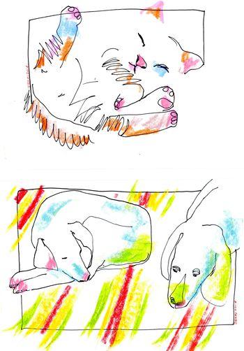 Draw014