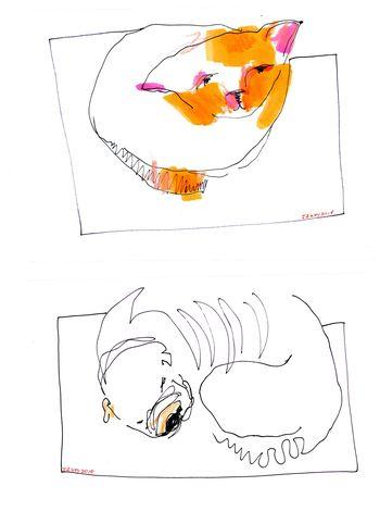 Draw007