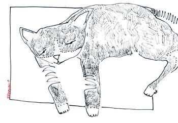 Draw027